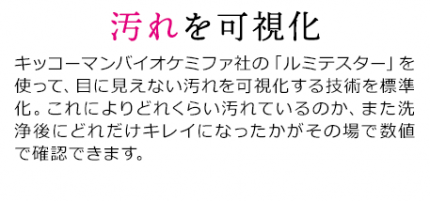 pc_2009hayawari_12-01re