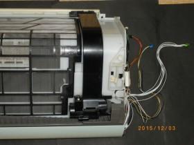 IMGP4355